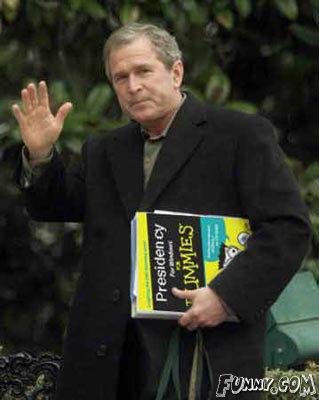 George Bush For Dummies