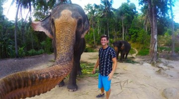 You Got To See The Very First Elephant Selphie