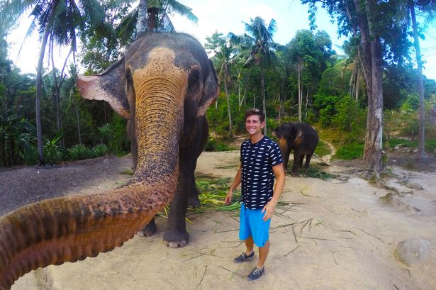 PAY-Elephant-Selfie
