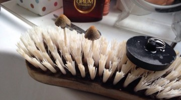 This is what Can Grow On Your Scrubbing Brush If You Don't Change It regularly