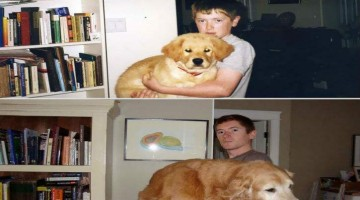 21 Cute Before And After Pictures Of Animals Growing Up