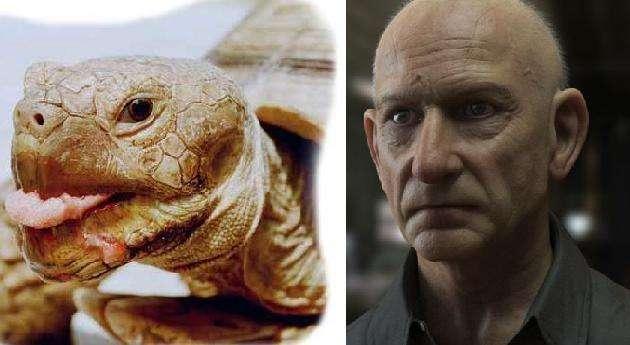 ben-kingsley-turtle-photo-u1