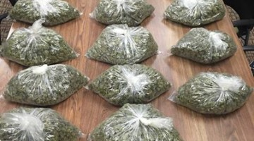 See Why Two Marijuana Smugglers Called 911 On Themselves
